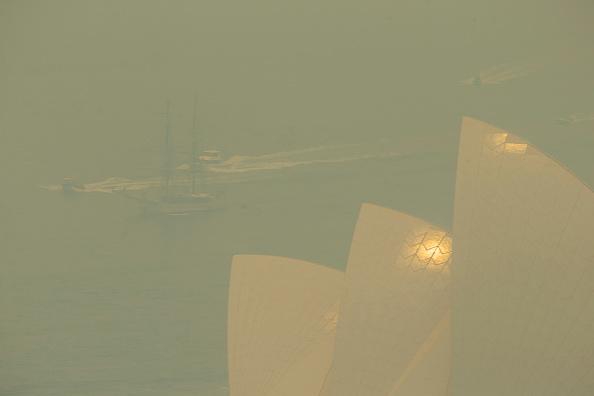 Sydney「Smoke Haze Blankets Sydney As Bushfires Continue To Burn Across NSW」:写真・画像(7)[壁紙.com]