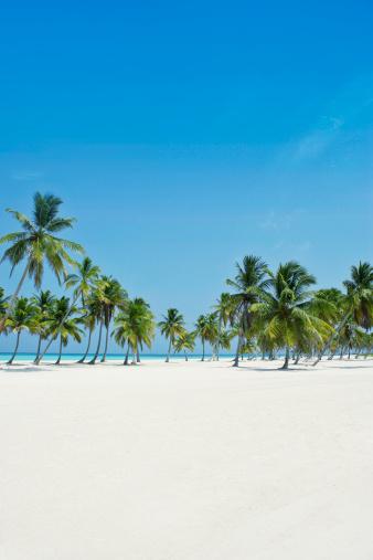Caribbean Sea「Perfect paradise」:スマホ壁紙(10)