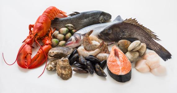 質感「Selection of seafood, studio shot」:スマホ壁紙(13)