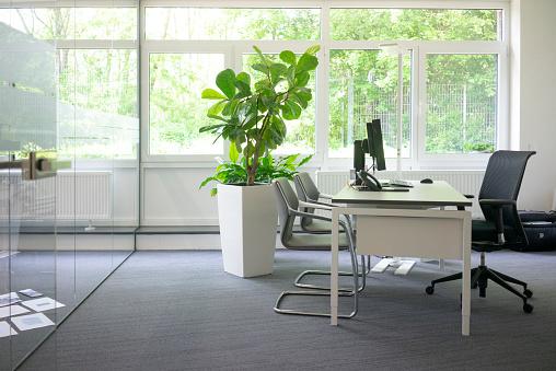 Houseplant「Empty workspace in office」:スマホ壁紙(2)