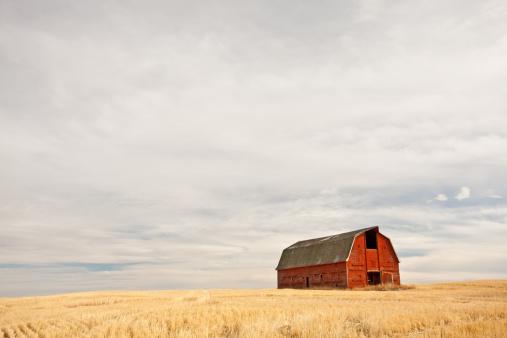 Prairie「Red Barn」:スマホ壁紙(11)