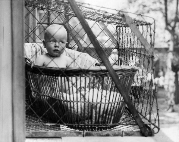 Baby - Human Age「Baby Cage」:写真・画像(13)[壁紙.com]