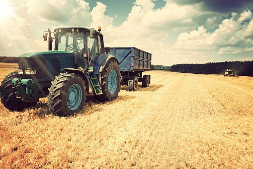 Corn - Crop「Harvesting」:スマホ壁紙(6)