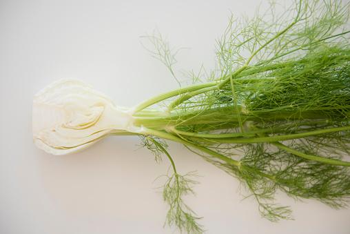 Fennel「Cross section of fennel on white background」:スマホ壁紙(2)
