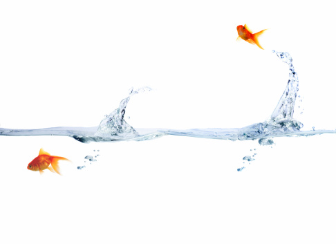Water Surface「Goldfish leaping out of water」:スマホ壁紙(12)