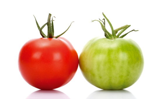Cherry Tomato「Red and green tomato, close-up」:スマホ壁紙(7)