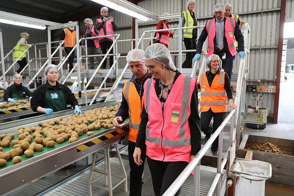 Kiwi「Prime Minister Jacinda Ardern Visits Bay Of Plenty As New Zealand Moves To COVID-19 Alert Level 1」:写真・画像(0)[壁紙.com]