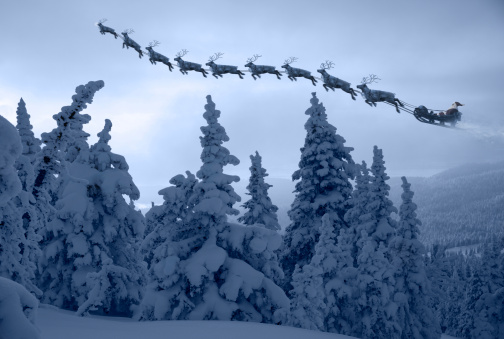 reindeer「Santa Clause and his reindeer above a snowy forest」:スマホ壁紙(13)