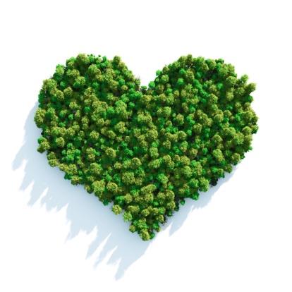 Love - Emotion「Forest Love」:スマホ壁紙(8)