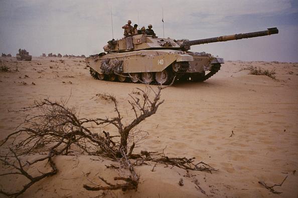 Persian Gulf Countries「Desert Rats」:写真・画像(18)[壁紙.com]
