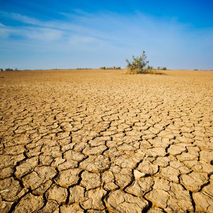 Climate Change「The Desert In Western India」:スマホ壁紙(14)