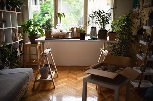 Planting「The gardener's room」:スマホ壁紙(11)