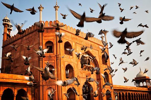Indian Culture「Jama Masjid - Old Delhi, India」:スマホ壁紙(15)