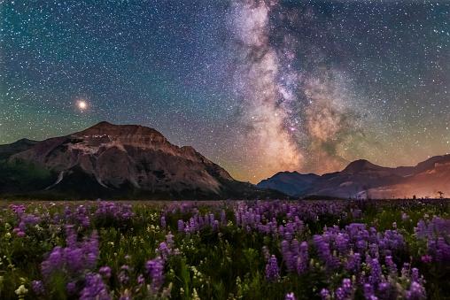 アルバータ州「The summer Milky Way and Mars over Waterton Valley and Vimy Peak.」:スマホ壁紙(14)
