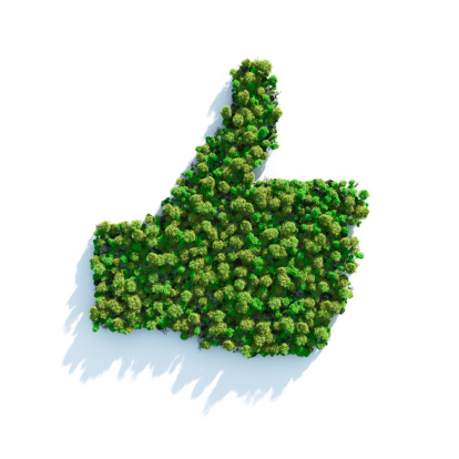 Reforestation「Green I Like」:スマホ壁紙(15)