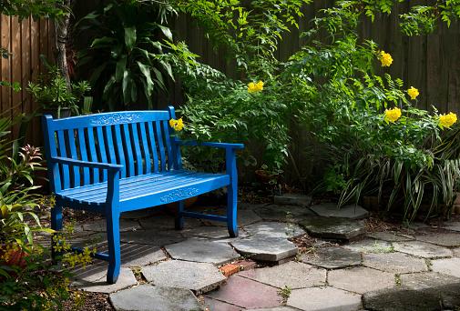 Paving Stone「Backyard Garden, Saint Petersburg, Florida」:スマホ壁紙(0)
