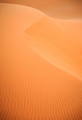 Dry「sand dunes」:スマホ壁紙(15)
