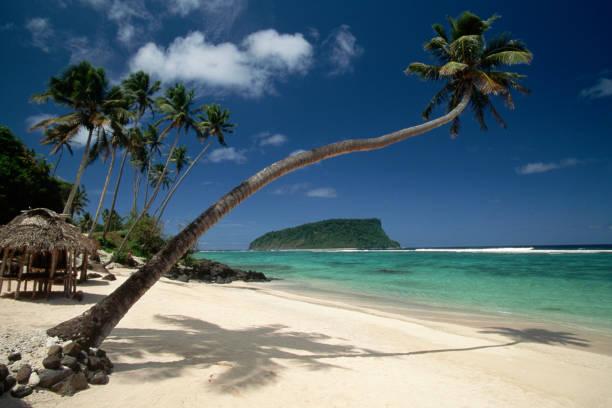 Lalomanu Beach in Western Samoa:スマホ壁紙(壁紙.com)