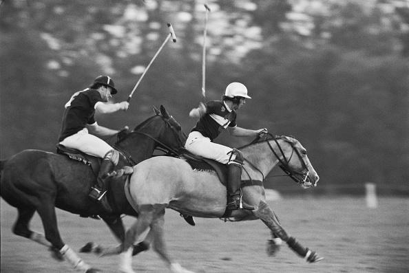 Horse「Prince Charles playing polo」:写真・画像(2)[壁紙.com]