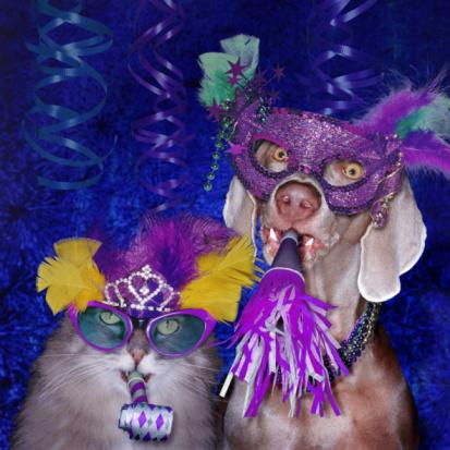 Crown - Headwear「Cat and dog wearing party paraphernalia, portrait」:スマホ壁紙(1)