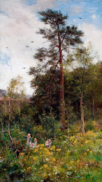 Wildflower「A Nook In Natures Garden,」:写真・画像(12)[壁紙.com]