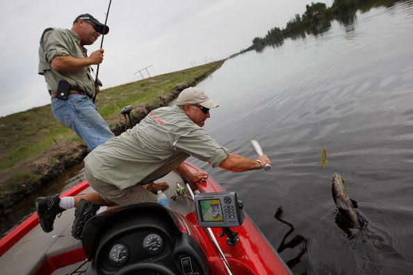 Fisherman「Florida Aims To Control Invasive Snakehead Fish Species」:写真・画像(6)[壁紙.com]