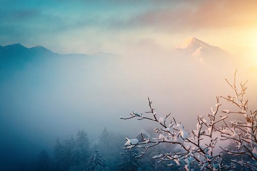パステルカラー「冬の日の出」:スマホ壁紙(11)