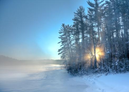Boreal Forest「Winter Sunrise」:スマホ壁紙(0)