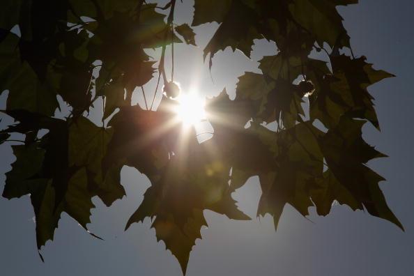 Sun「Autumn Weather Reaches Germany」:写真・画像(1)[壁紙.com]