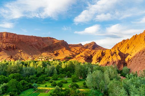 アトラス山脈「赤いモロッコアトラス山脈、緑の木々と谷。背景に青い曇り空。」:スマホ壁紙(13)