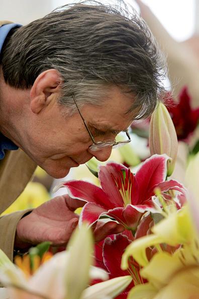 Smelling「Birmingham Flower Show」:写真・画像(16)[壁紙.com]