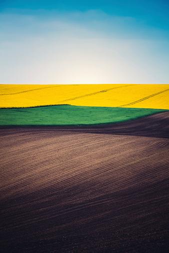 Plowed Field「Layers Of Colorful Field」:スマホ壁紙(8)