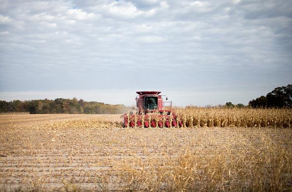Farm「Iowa Farmers Harvest Crops As Colder Weather Brings Season's End Near」:写真・画像(3)[壁紙.com]