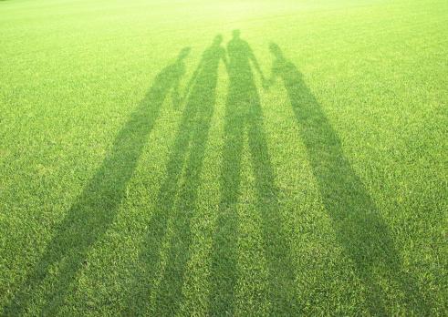 Hokkaido「Shadow in the field of grass」:スマホ壁紙(15)