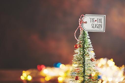 Happiness「Tiny Christmas tree with Christmas lights and holiday message」:スマホ壁紙(2)
