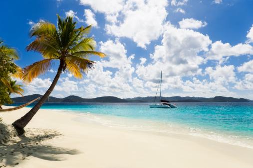 Catamaran「tropical Caribbean island」:スマホ壁紙(8)
