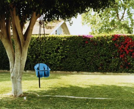Lawn「Baby swing chair hanging from tree in backyard」:スマホ壁紙(13)