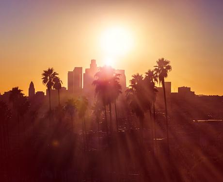 City Of Los Angeles「Downtown Los Angeles」:スマホ壁紙(13)