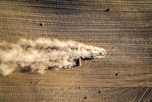 Planting「Stirring up dust」:スマホ壁紙(17)