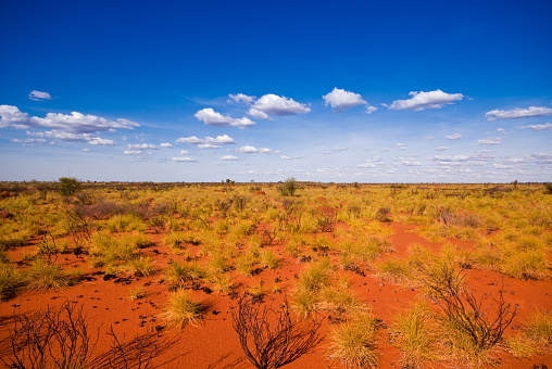 Remote Location「Outback landscape showing the blue sky and orange sands」:スマホ壁紙(3)