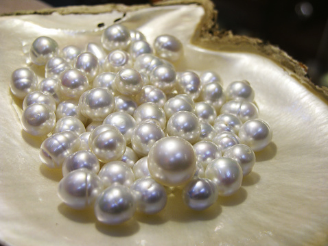 Agricultural Building「Broome is the world capital for pearl cultivation」:スマホ壁紙(13)