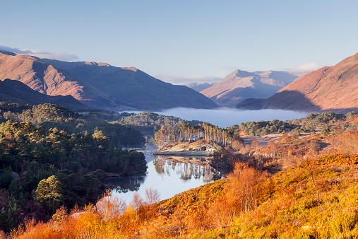 Scottish Highlands「Low autumn mist at dawn in Glen Affric」:スマホ壁紙(10)