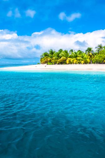 Island「Tropical island turquoise beach with coconut trees」:スマホ壁紙(1)