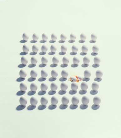 Conformity「lots of eggs」:スマホ壁紙(10)