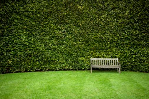 Lawn「Bench in garden」:スマホ壁紙(18)