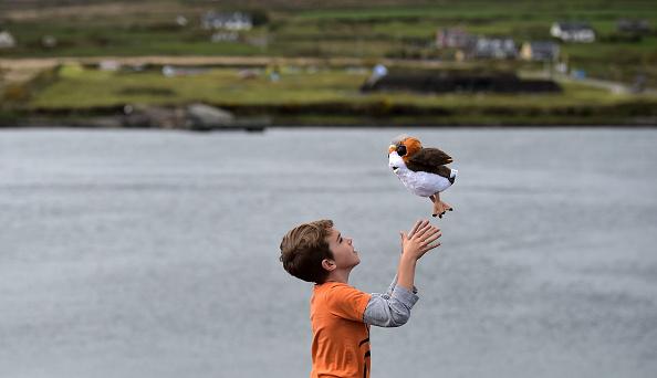 Stuffed「Ireland Hosts New Stars Wars Festival」:写真・画像(12)[壁紙.com]