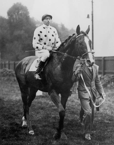 Horse「Beasley On Omaha」:写真・画像(9)[壁紙.com]