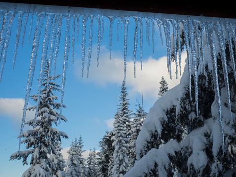 クリスタル山「Icicles and snow covered trees through window」:スマホ壁紙(6)
