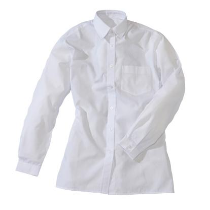 Well-dressed「White formal female shirt」:スマホ壁紙(18)