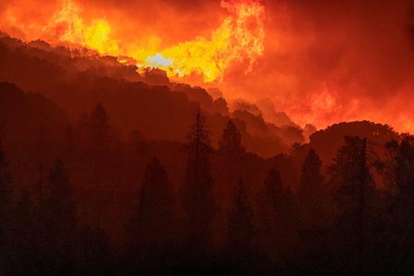 Forest「Creek Fire Grows Rapidly Near Shaver Lake, California」:写真・画像(8)[壁紙.com]
